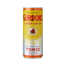 Gordon's Gin Tonic 250ml